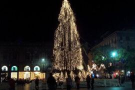 albero-con-catenarie-verdi